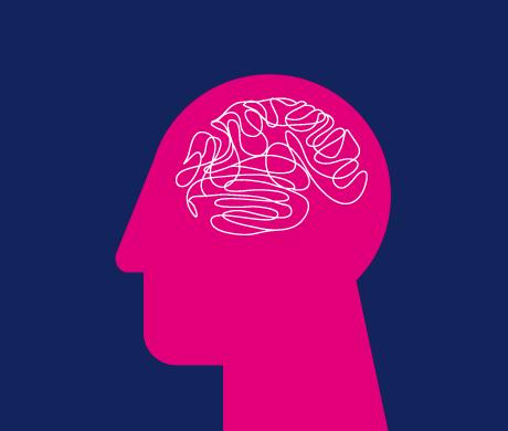 Pinker Kopf mit Querschnitt des Gehirns, Blickrichtung nach links